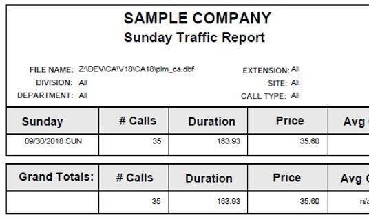 sunday traffic report sample.jpg