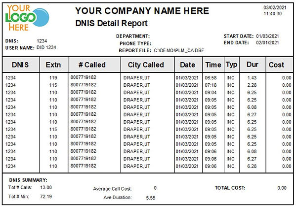 Comm One Call Accounting Software sample DNIS detail report