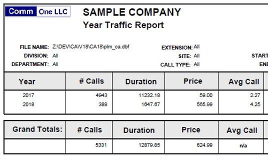 year traffic report sample.jpg