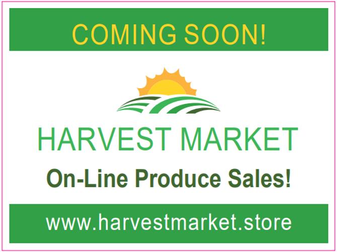 Harvet Market Store Landing Sign.PNG