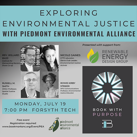Panel Event IDR Environmental Justice.png