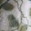 Thumbnail: Beech Leaves Scarf