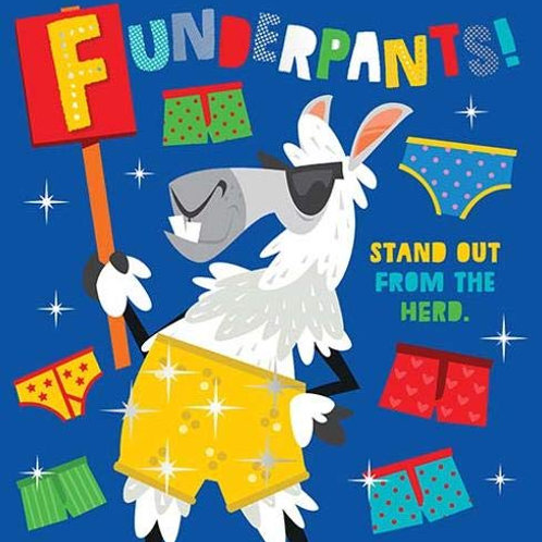 Book - Funderpants
