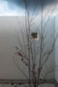 子供部屋,中庭,シンプル,モダン,家,住宅,注文住宅,デザイン,ミニマル,家,建築家,設計事務所,兵庫県,多可郡