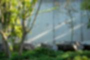 庭,庭石,平屋,住宅,シンプル,モダン,玄昌石,注文住宅,デザイン,ミニマル,家,建築家,設計事務所