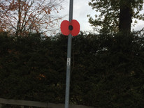 British Legion Poppy Appeal