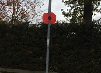 British Legion Poppy Appeal