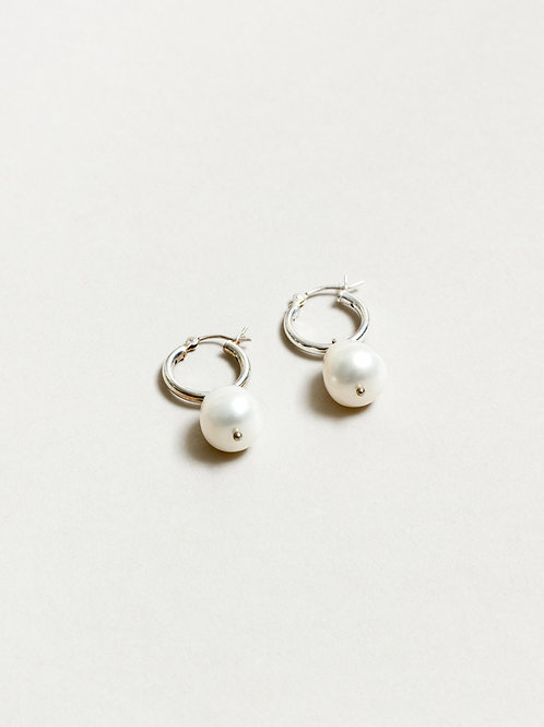WOLF CIRCUS - Small Pearl hoops