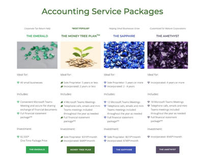 Accountant Web Design Example of Services