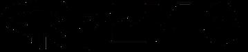 rizz_logo_black.png