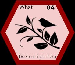 Elements - Description 04.png