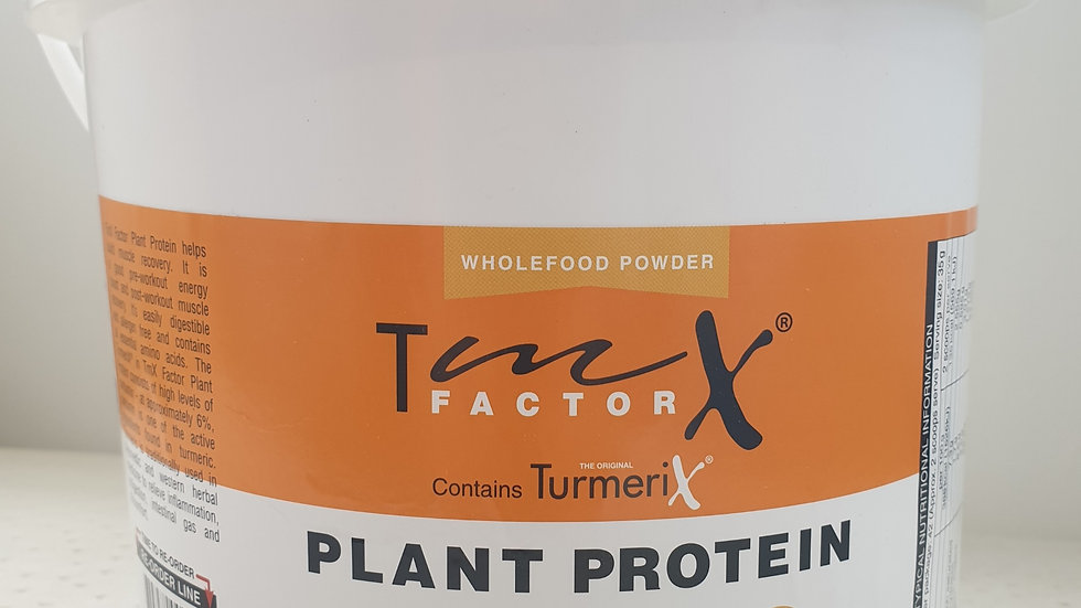 Turmerix Plant Protein Powder 2 for $100!