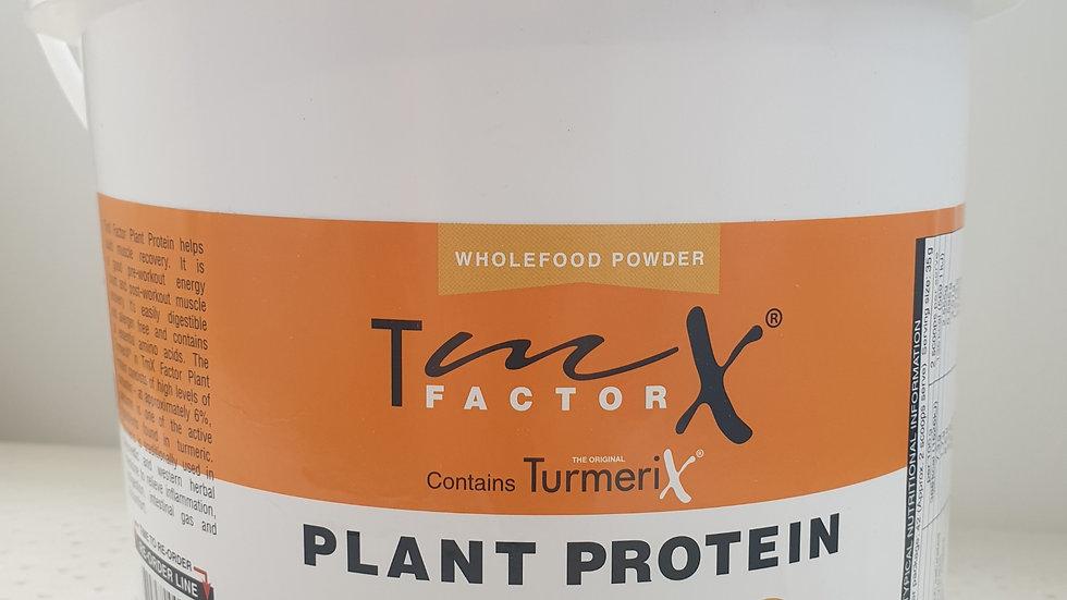 Turmerix Plant Protein Powder