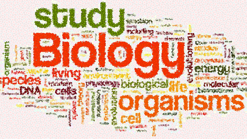 Biology Word Collage.png