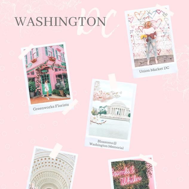 Washington DC LookBook
