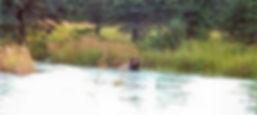 kenai river fishing guides Alaska fishing charters