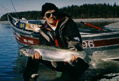 Kenai trout