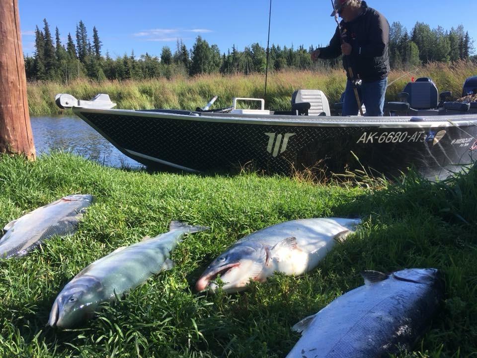 kenai river coho fishing