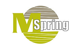 Logo_Mspring_micro.jpeg