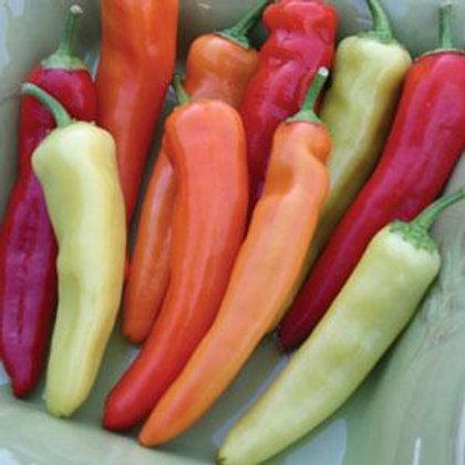 Hungarian Hot Wax Pepper 4 pack