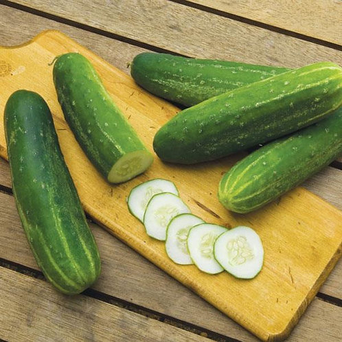 Straight 8 Cucumber 4 pack