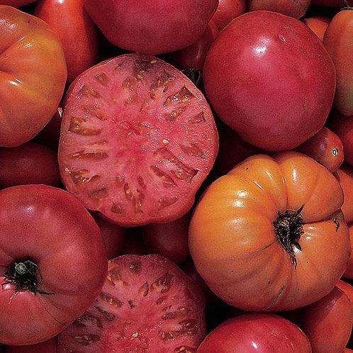 Mortgage Lifter Heirloom Tomato Single