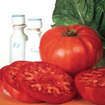Supersteak Tomato 4 pack