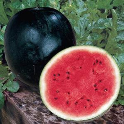 Sugar Baby Watermelon 4 pack