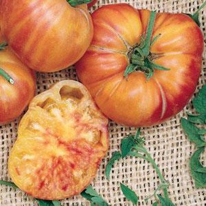 Pineapple Tomato Single