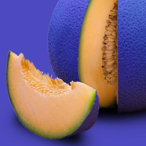 Burpee Hybrid Cantaloupe 4 pack