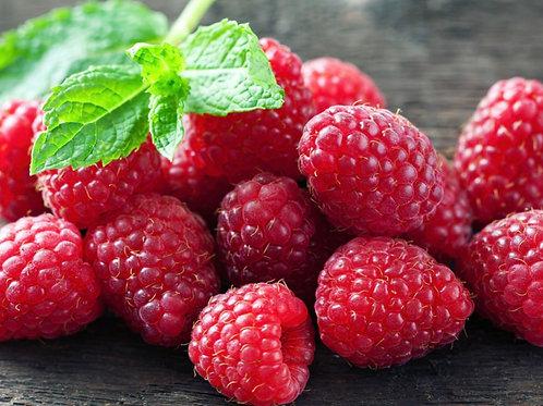 Raspberry September