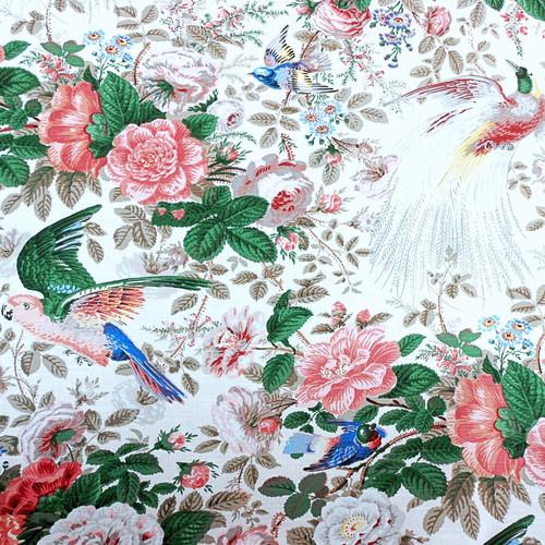 Birds of Paradise (Slub) - Pinks