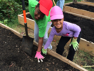 New Leaf Community Garden