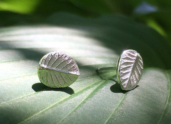 Silver Leaf Post Earrings