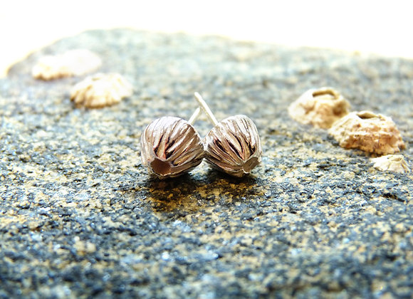 "Silver ""Open"" Barnacle Post Earrings"