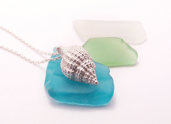 Silver Nutmeg Shell Necklace