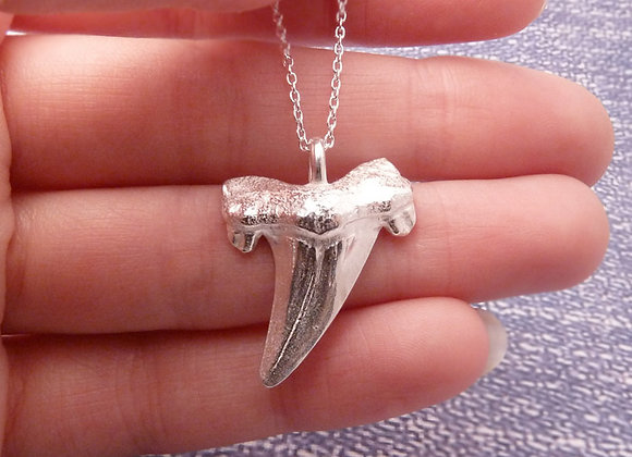 Otodus Shark Tooth Necklace