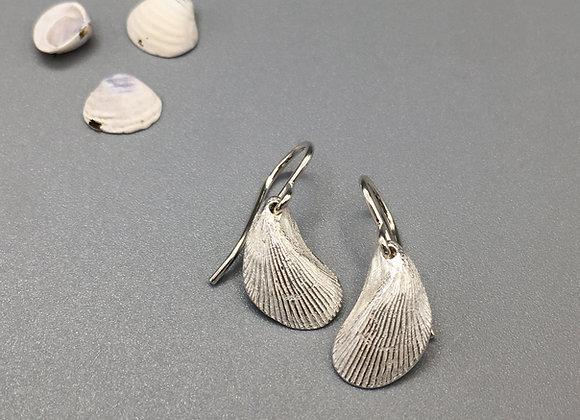 Silver Mussel Earrings