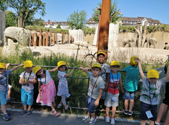Ballade au Zoo 1.jpg