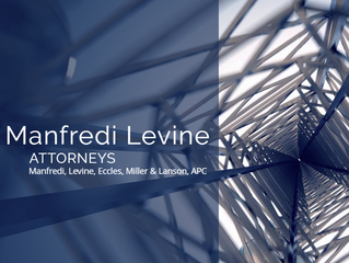 MANFREDI LEVINE LEGAL SEMINARS