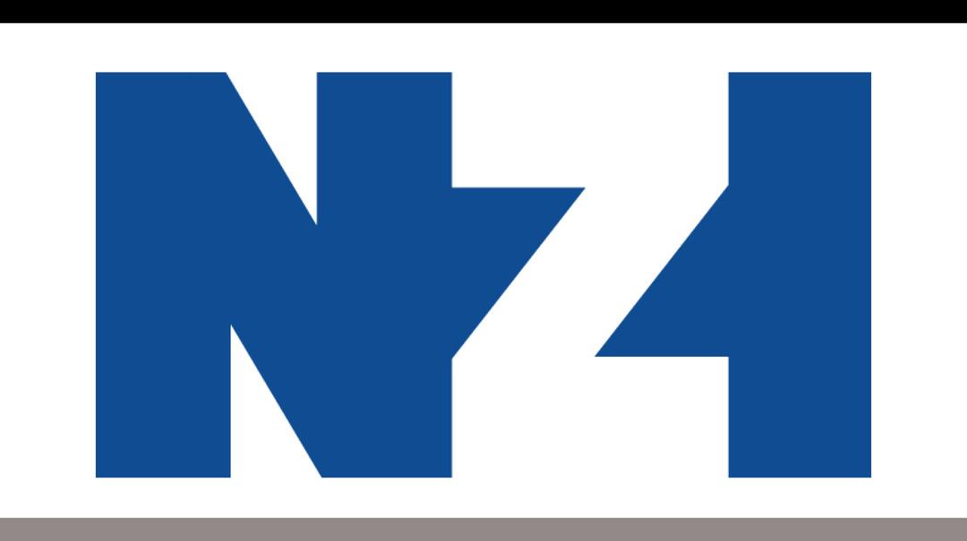 NZI.jpg