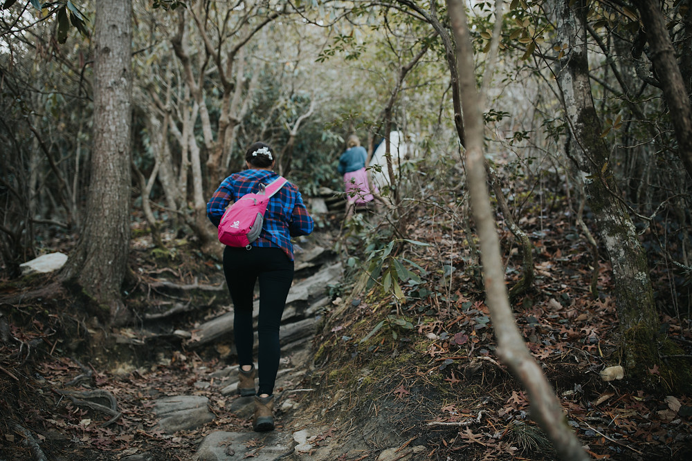 Trail in Linville to Hawksbill Mountain