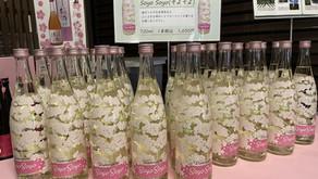 春です🌸純米吟醸原酒「soyo soyo」(そよそよ) いかがでしょうか