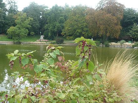 parc montsouris.jpg
