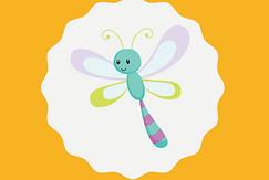 Dragonflies Class