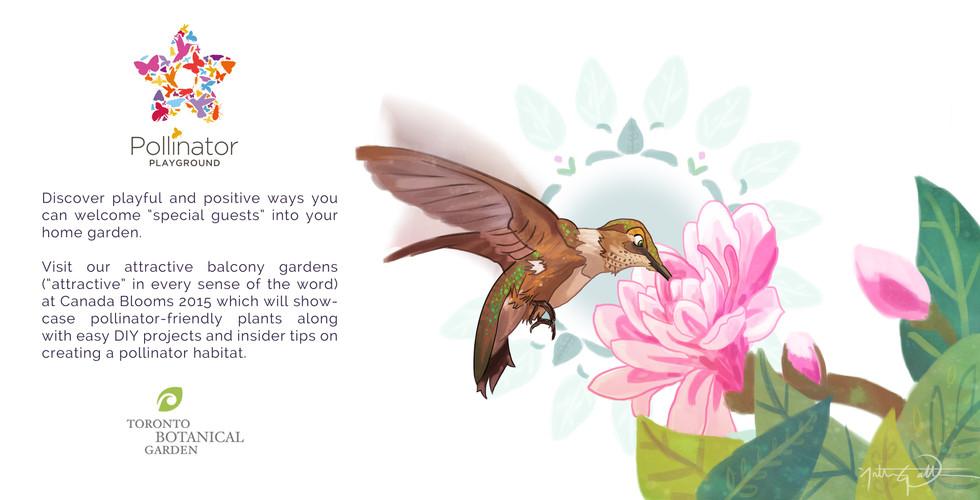 Pollinator Playground -Toronto Botanical Gardens