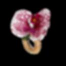 90003_-_Porta_Guardanapo_Orquídea_Pintad