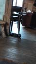 Vallandatud kass, tuhkur ja pasteet