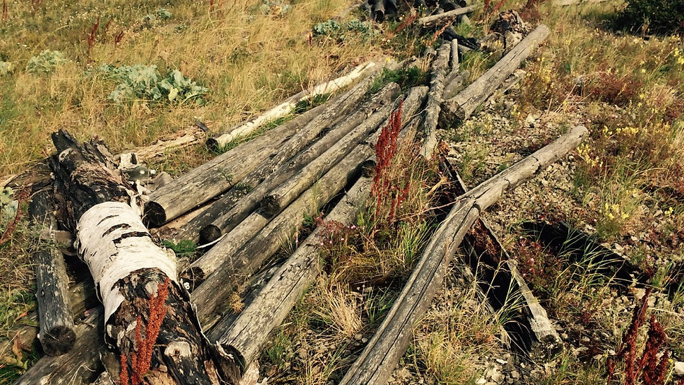 Vilsandi rahvuspargi süstamatk 20.-22.08