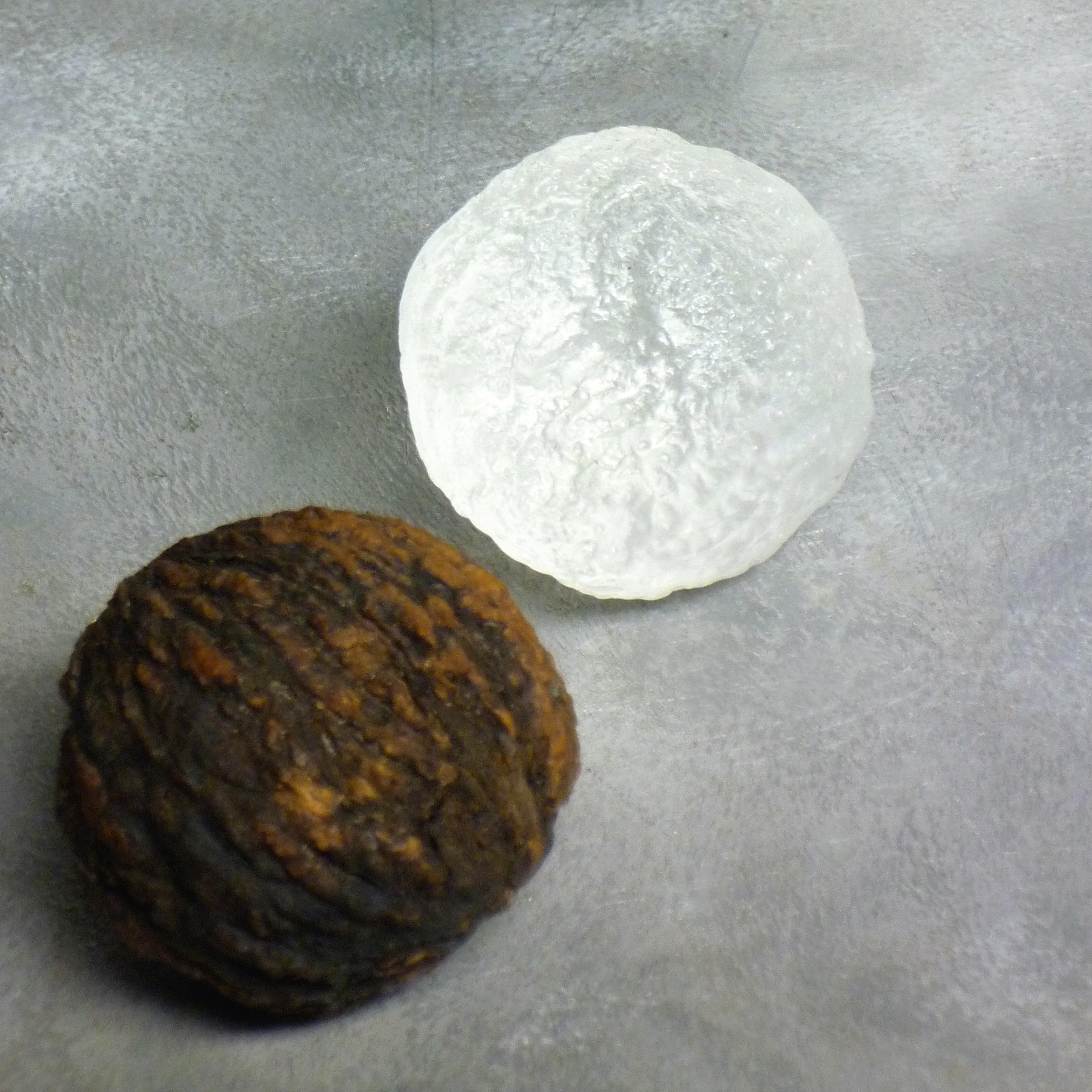Mediation Walnuts Series in Glass 2015